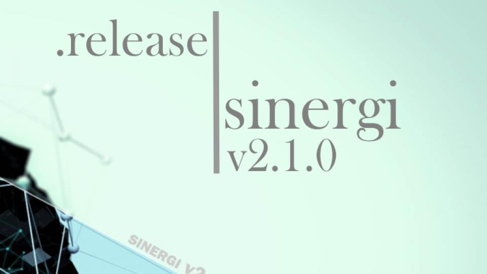 release sinergi