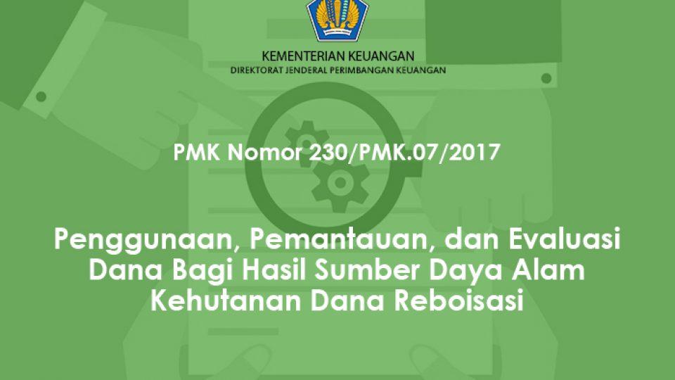 pmk 230