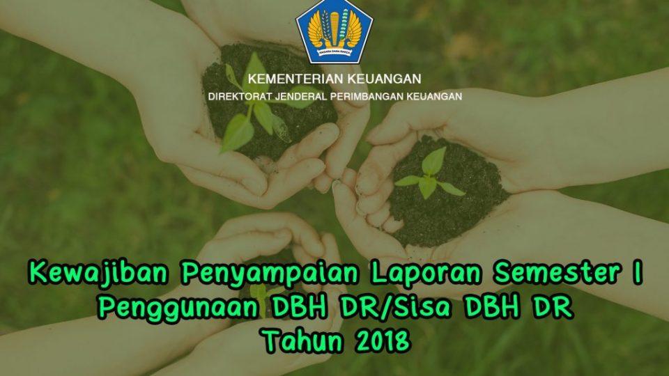 laporan DBH DR